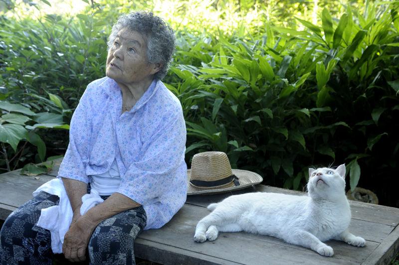 Японские бабушки онлайн фото 661-497