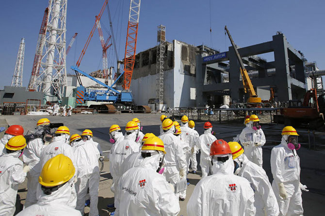 Мутации растительного мира на Фукусиме