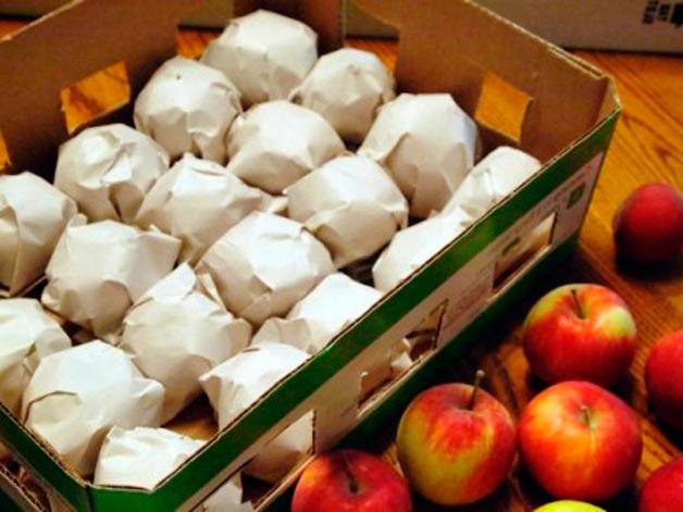 Как правильно хранить яблоки в домашних условиях