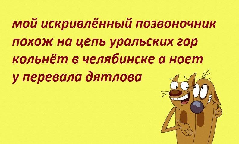 Анекдоты Про Спину