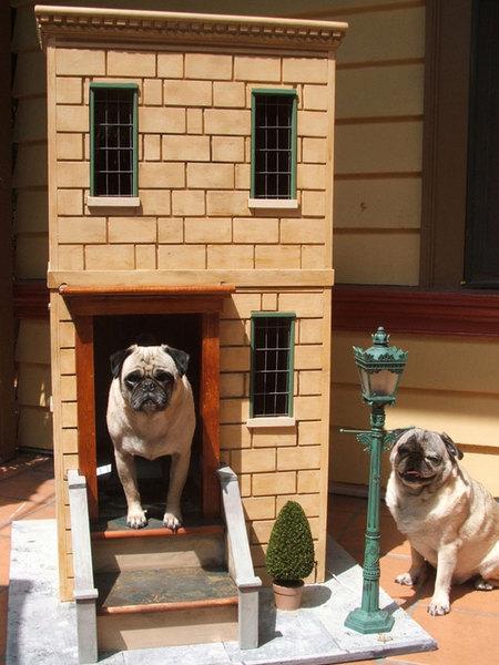 12 креативных домиков, которые хозяева сами сделали для своих собак фото 2