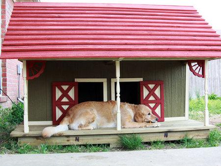 12 креативных домиков, которые хозяева сами сделали для своих собак фото 12