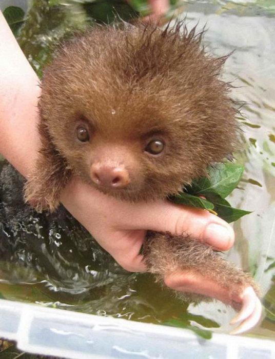 И почему я так раньше боялся купаться...