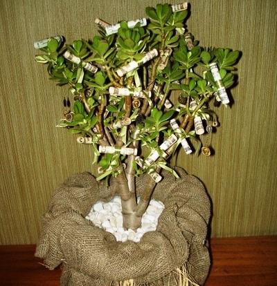Дерево из настоящих денег