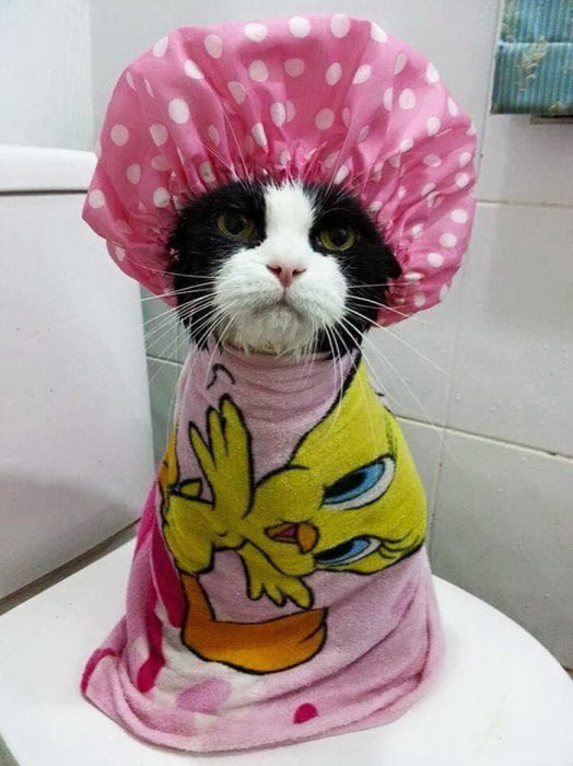 Ещё нужно высушиться и накрасить коготочки...