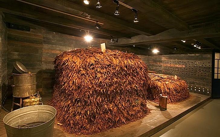 Музей табака