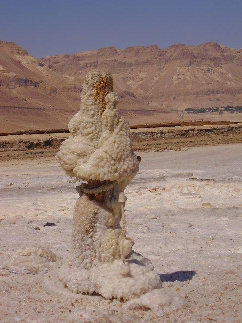 Соляной столб Мертвого моря. Израиль. Фото