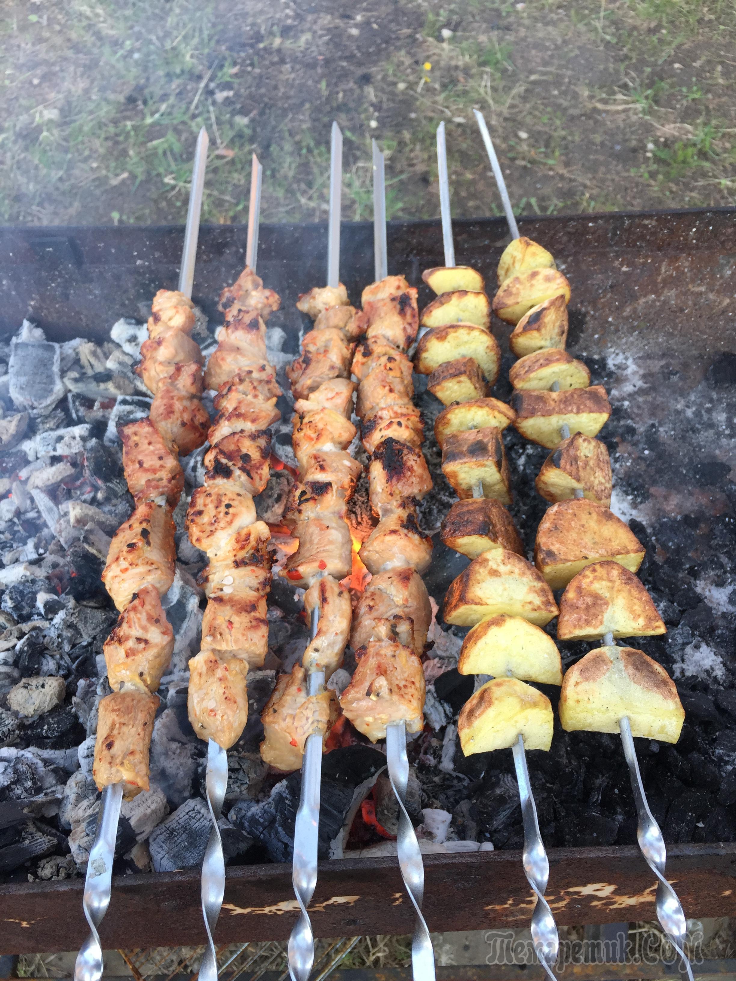 Как сделать шашлык в духовке: из курицы, баранины, свинины 68