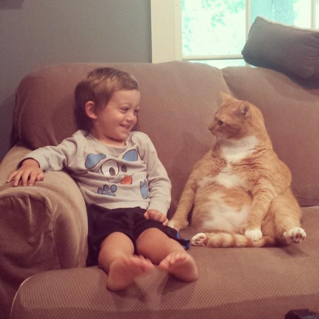 А Мишель забрала кота себе домой дружба, кот, мальчик