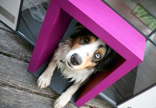 12 креативных домиков, которые хозяева сами сделали для своих собак фото 1