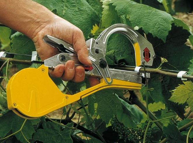 Степлер для подвязки винограда