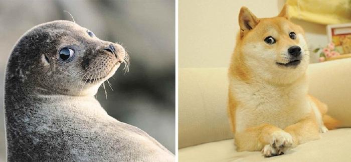Поразительно похожие взгляды.
