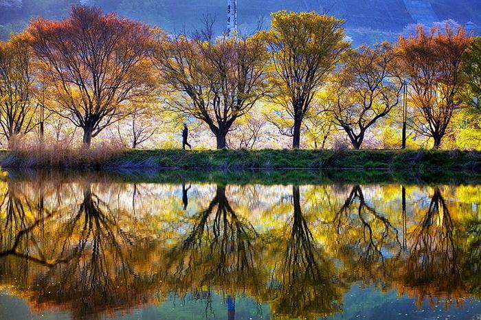 Очаровательные пейзажи Южной Кореи от фотографа Jaewoon U
