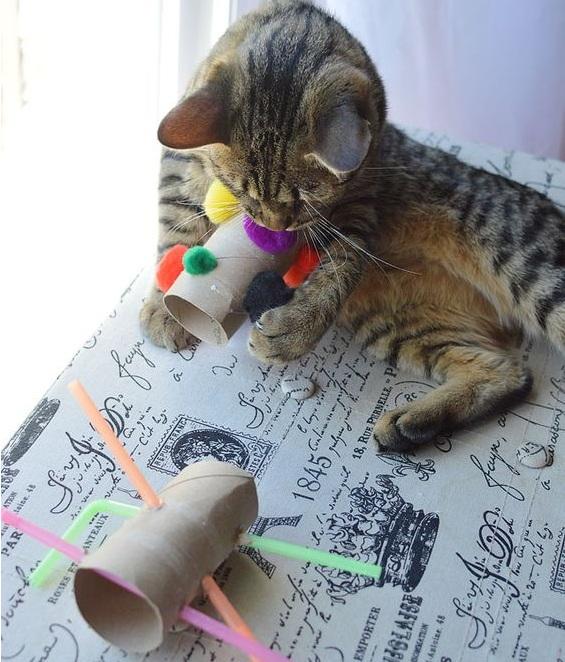Игрушка для кота своими руками 25