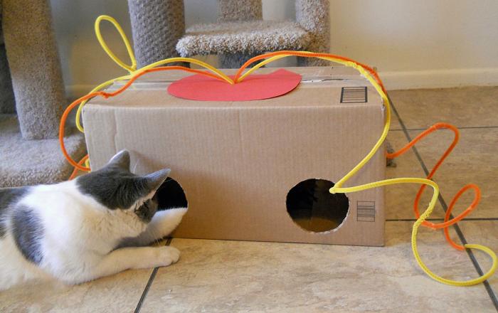 Игрушки для котов своими руками сделать