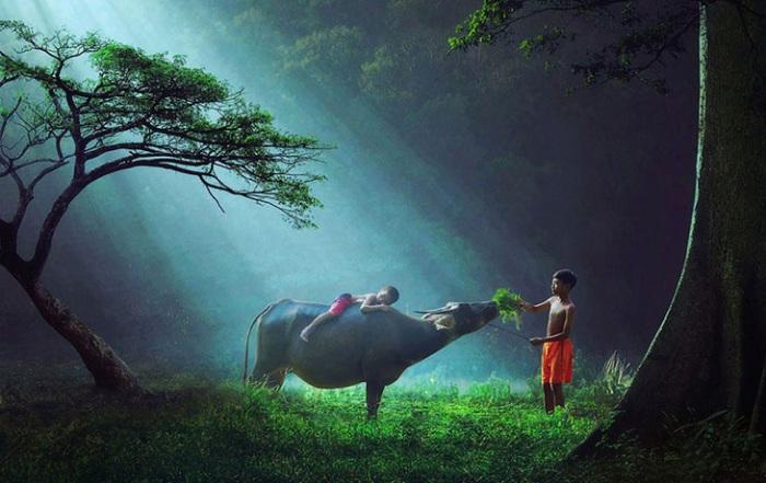 Красота Индонезии руками и глазами фотографа Sukron Mamun.