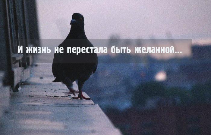 И жизнь не перестала быть желанной...