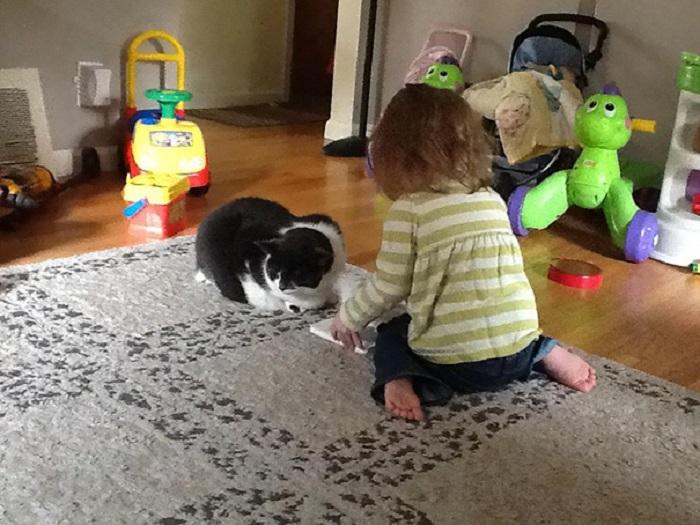 У кошки больные суставы и она не может бегать и резвиться, поэтому чтобы ей не было скучно, малышка решила почитать книжку вслух.