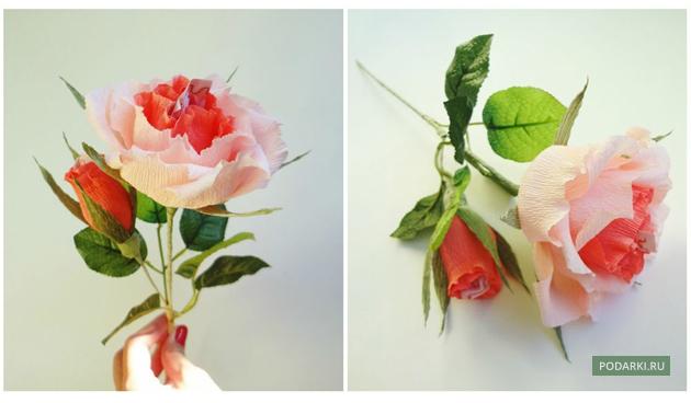Розы цветы из конфет и гофрированной бумаги своими руками мастер класс