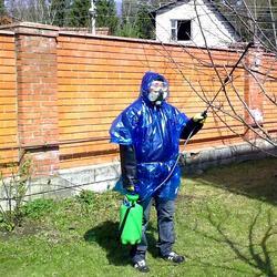Применяем бордосскую смесь в саду и огороде