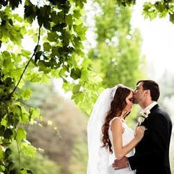 Как организовать свадьбу самостоятельно? Идеи и советы на свадьбу