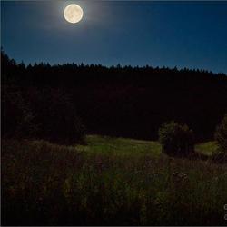 Удивительное впечатление от лунной ночи