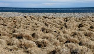 Байкал и его берега