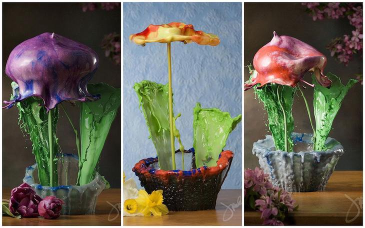 BIGPIC39 Жидкие комнатные цветы