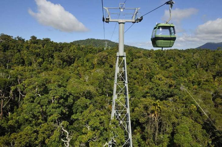 Skyrail Rainforest Cableway, ���������. �������� ������, ���, �����������