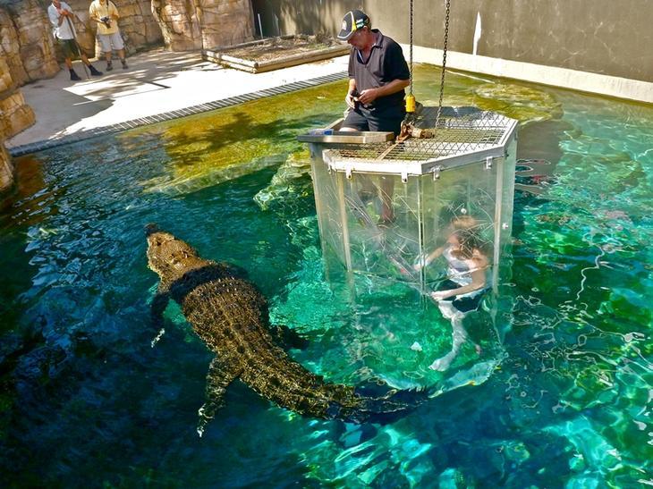 Бухта крокозавра - экстремальный аттракцион в Австралии