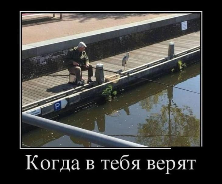 demotivatory_na_ponedelnik_30_foto_1