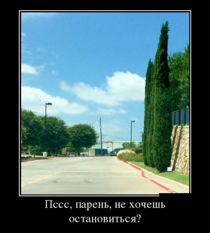 demotivatory_na_ponedelnik_30_foto_2