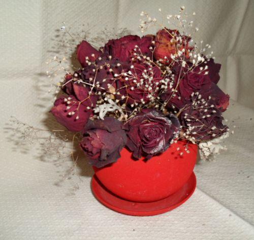 Как сделать гербарии из розы