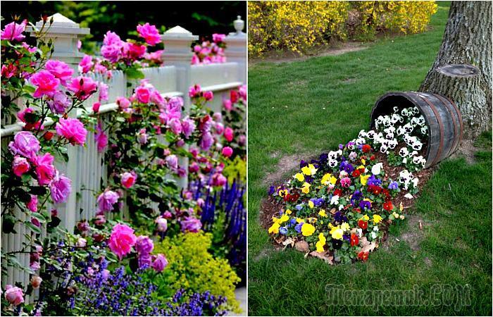 Цветущий сад: 17 фантастических идей для дизайна клумб, которые станут изысканным украшением дачного участка