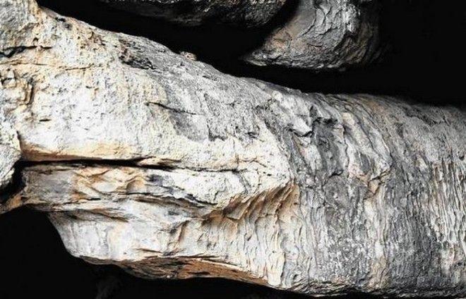 Алтарь Каменного питона