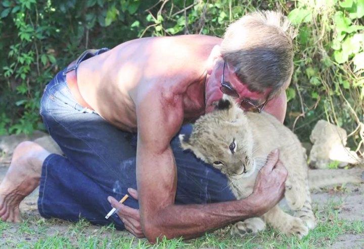11 лет дружбы между человеком и львом