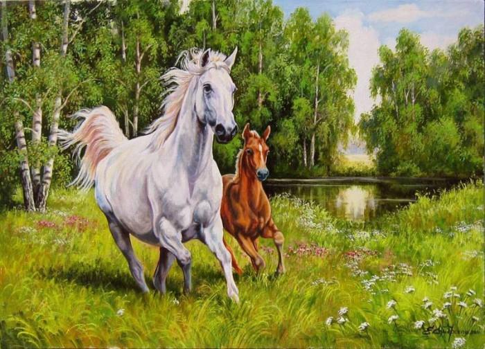 лошади художник Bonnie Marris - 14