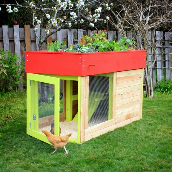 Крошечный курятник с садом.