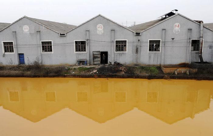 При сильном загрязнении воды страдают также подземные истоки.