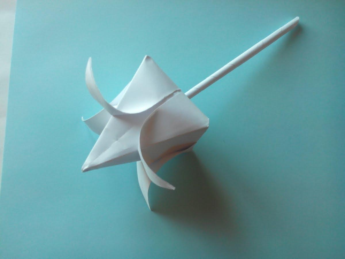 белый цветок пошаговая инструкция