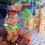 Подвесные горшки и корзины для выращивания орхидей