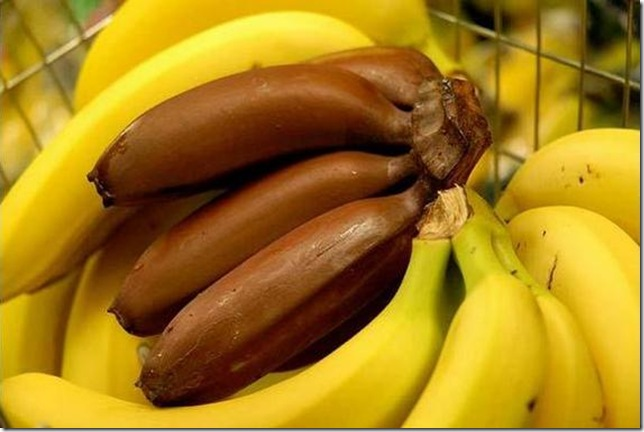 unusual-fruit-and-vegetables23