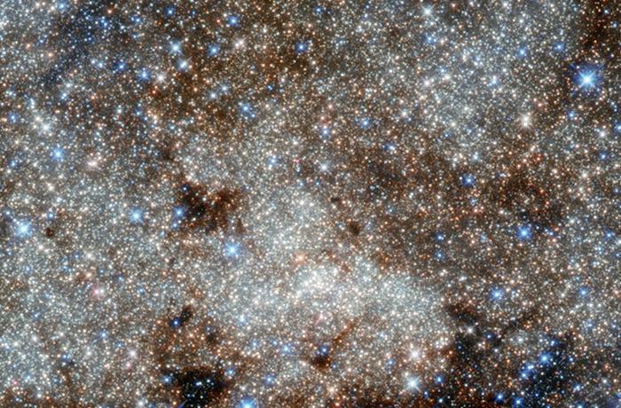 Редкие кадры звездной пыли.