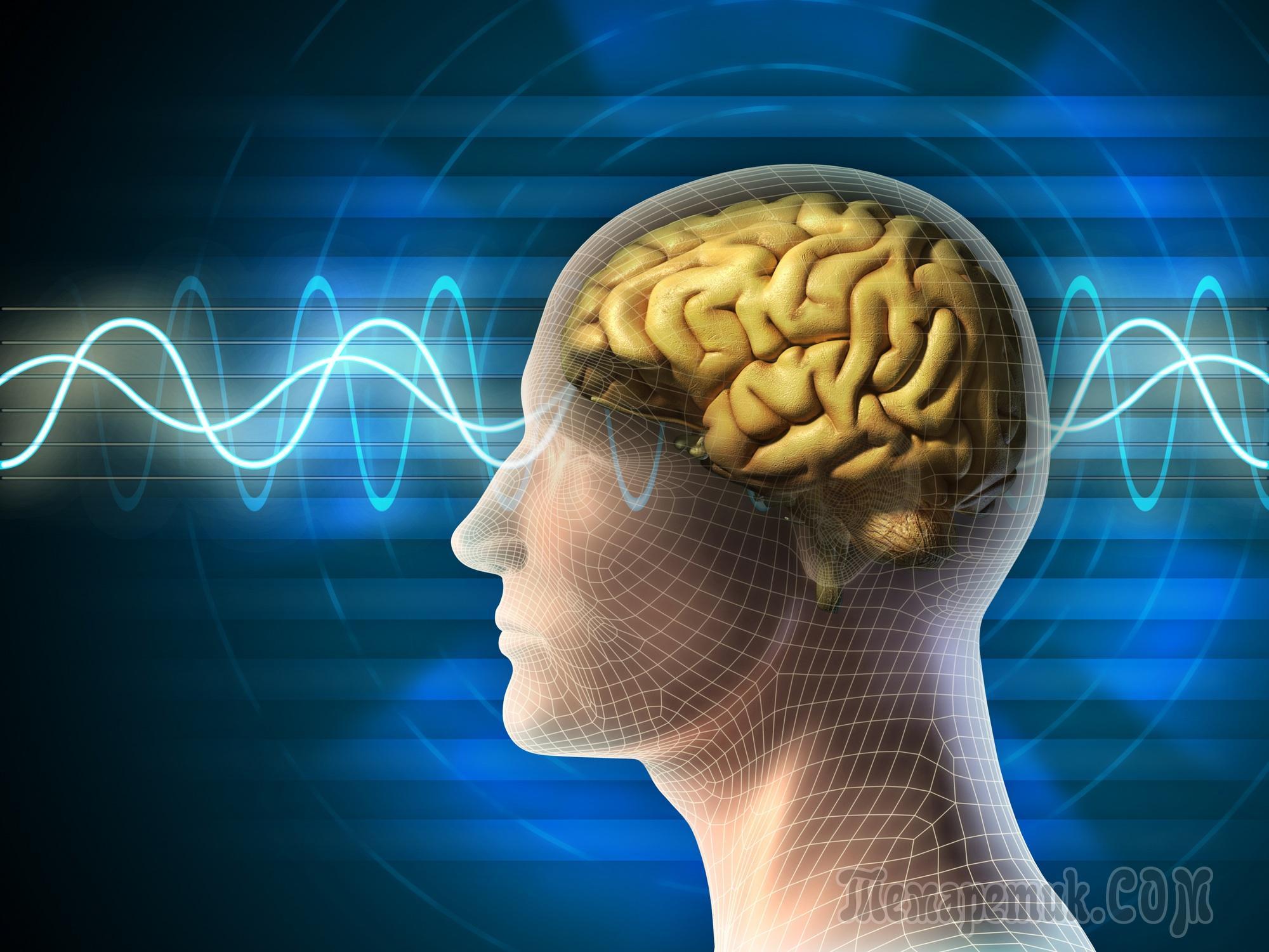 4 состояние гол мозга молитвенное в подсознание описывают свой