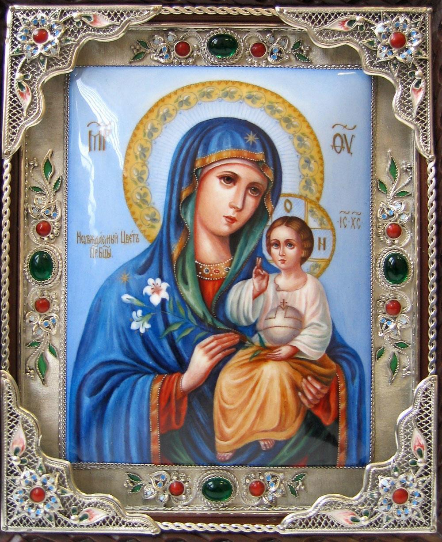 Молитва божьей матери о замужестве неувядаемый цвет