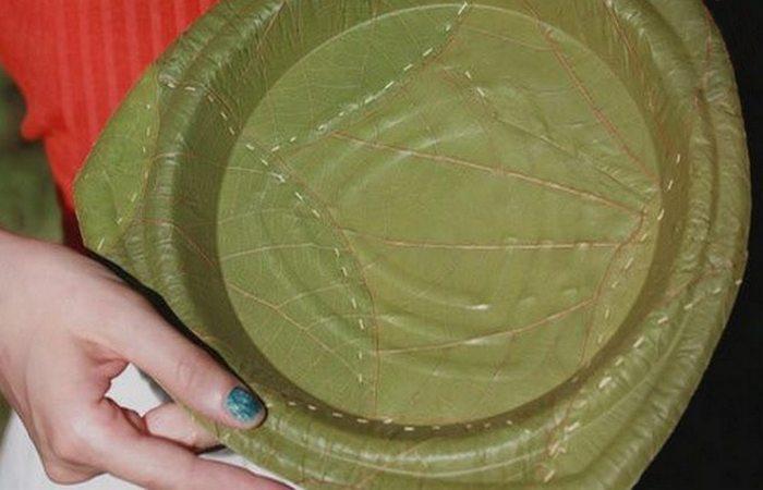 Альтернатива пластику: листья.