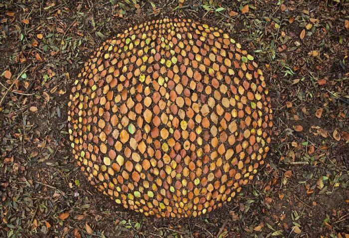 Удивительные работы талантливого художника из Великобритании, который использует природу вместо холста.