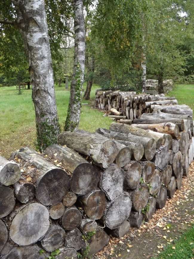 Очень эффектно смотрится зонирование двора с помощью укладки дров