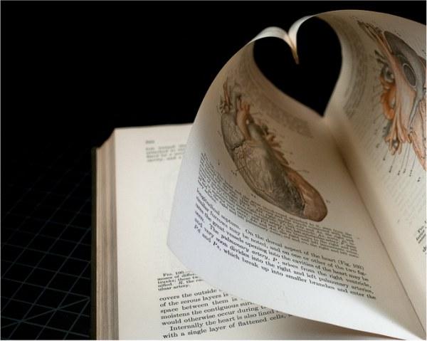 Книжный арт от Томаса Аллена (22 фото)