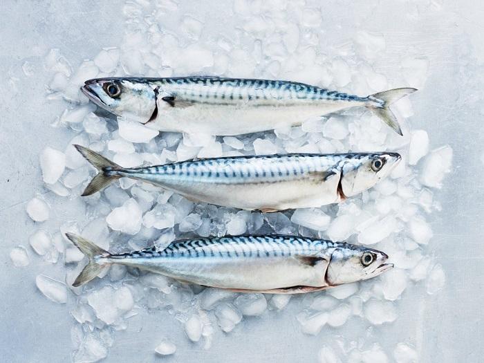 Хищная рыба способна накапливать ртуть. / Фото: attuale.ru